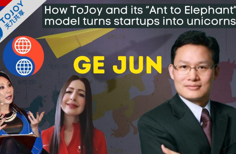 "Hey China! How ToJoy and its ""Ant to Elephant"" model turns startups into unicorns"