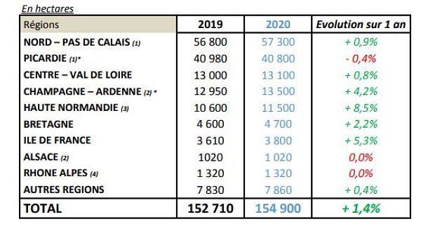 Emblavements 2020 en pommes de terre de conservation